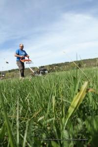 Franck Bonneau apara a grama do campo para criar a figura gigante.